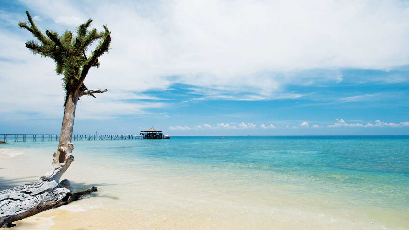 Best Tioman Resort